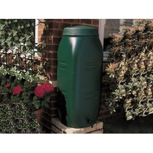Environmental Tips Gardeners - Water Butt