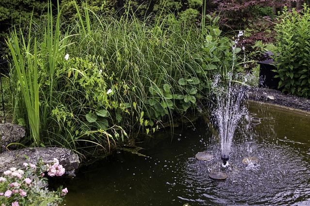 garden-400558_640