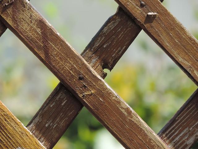 garden-fence-532309_640